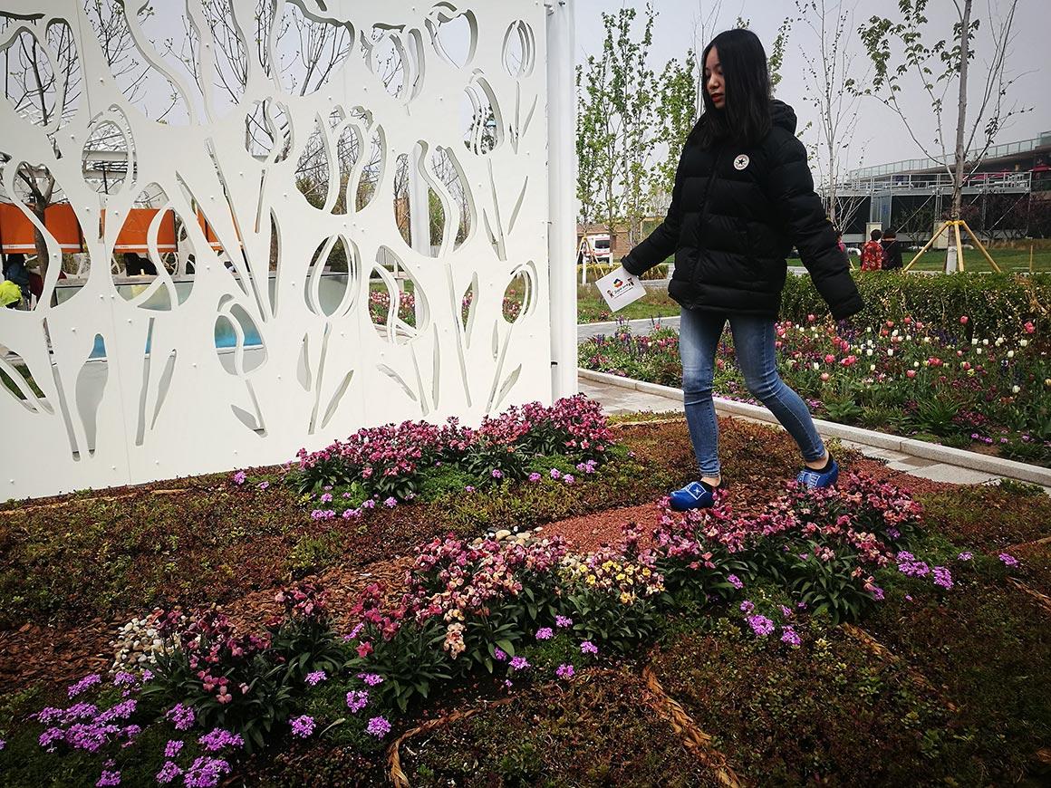 Expo_Beijing_2019_08
