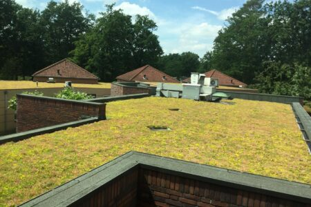 New green roof for the Mutsaers Foundation in Venlo